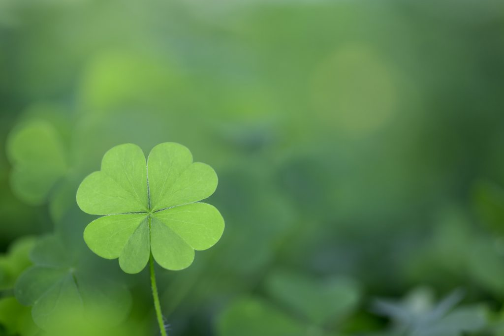 St. Patrick's Day Events In Connecticut | Roofing Specialists | CT | Landmark Exteriors |