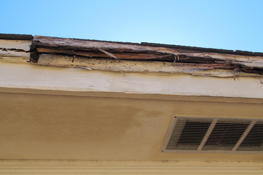 What Are Main Causes Of Trim Rot Landmark Exteriors
