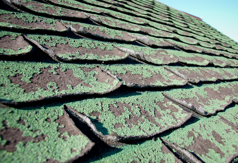 What to Do if the House You Want to Buy Has a Bad Roof?