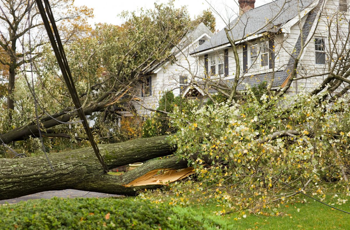 How to Check for Roof Damage After a Summer Storm