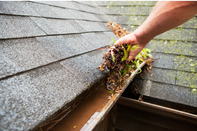 How Often Should My Gutters Be Cleaned?