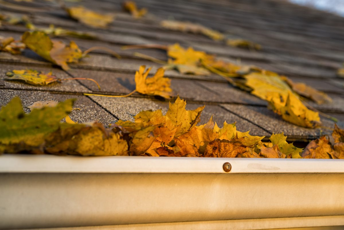 8 Tips For Preparing Your Home For The Fall Season