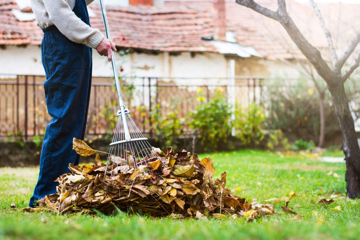 Tips for Raking Up Leaves