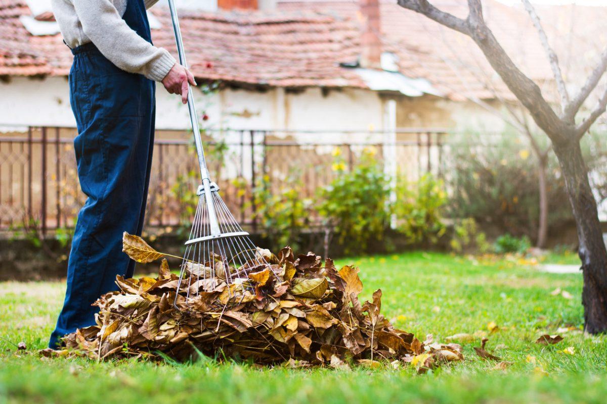 Tips for Raking Up Leaves