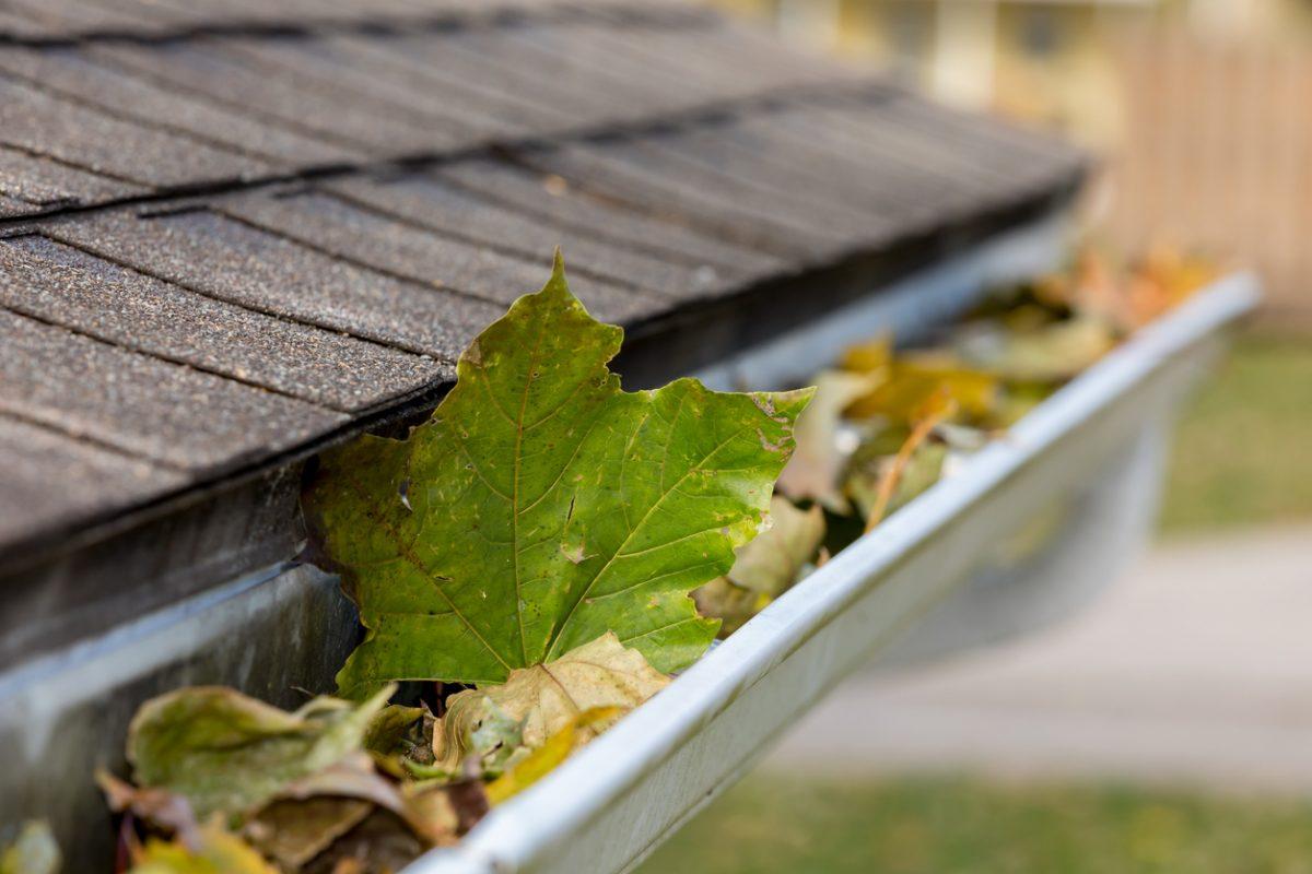 Why Spring Gutter Repair is Essential