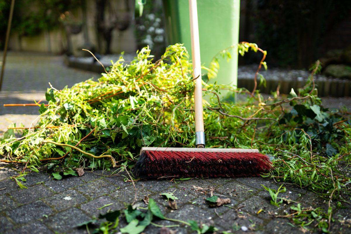 Spring Yard Cleanup Checklist